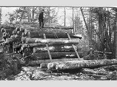 Logging Camp - Northern Wisconsin by paws22, via Flickr ... Logging Camp History