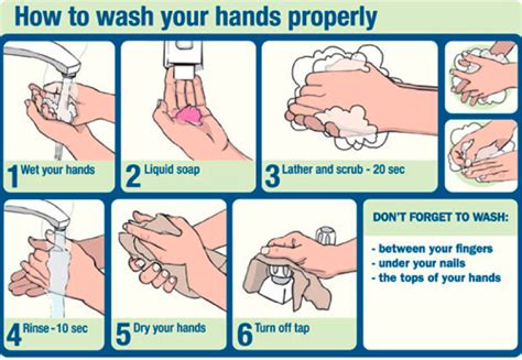 how to wash hand properly in step by step and propery risk management