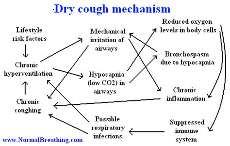 do fans cause coughing dry cough causes and remedies that work in 1 min fast