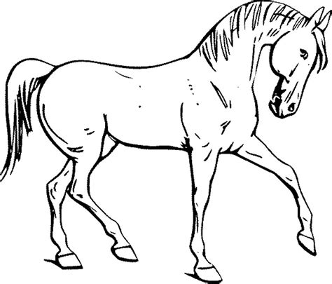 simple horse coloring page coloring pages printable coloring pages horses printable