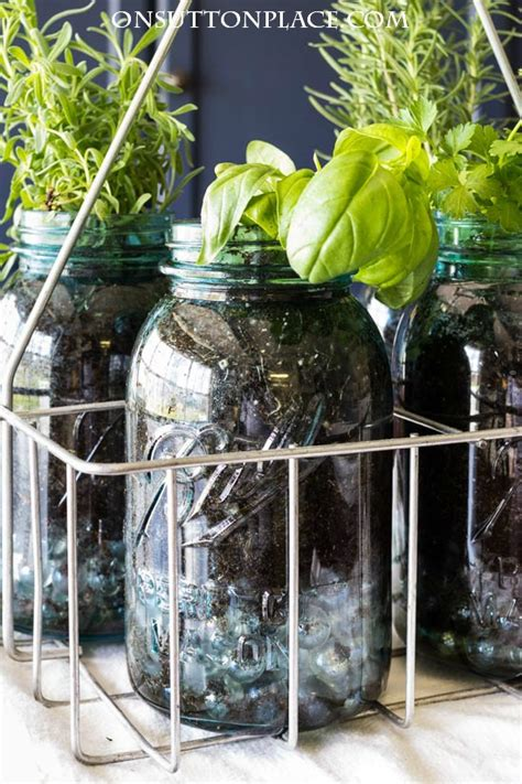 easy indoor herb garden indoor mason jar herb garden