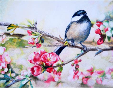 colored pencil society colored pencil society exhibition in richardson shows that