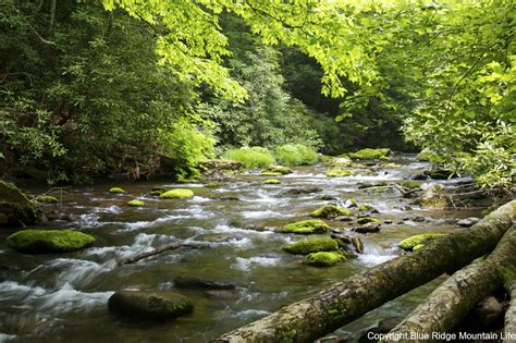 Top 10 Places To Visit In Us by Great Smoky Mountains National Park Photo Page Blue