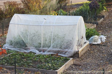 how to prepare a vegetable garden how to prepare your vegetable garden for winter