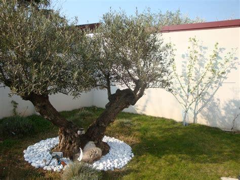 Amenager Jardin A Moindre Cout 4468 by Conseils Et Id 233 Es Pour Am 233 Nager Jardin Jardin Tendance
