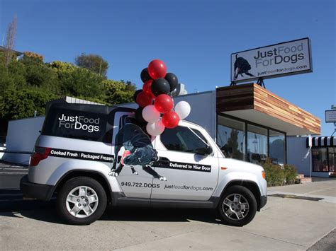 just food for dogs newport local news just food for dogs serves healthy canine cuisine newport local news