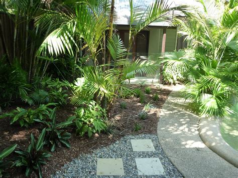 tropical backyard ideas hortulus landscape design construction tropical garden