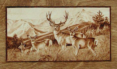 mule deer herd   rockies pyrography  cate mccauley