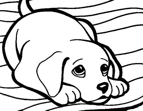 Free Coloring Pages Of Rug Rug Coloring Page