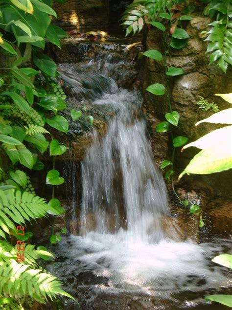 waterfalls for backyard 63 relaxing garden and backyard waterfalls digsdigs