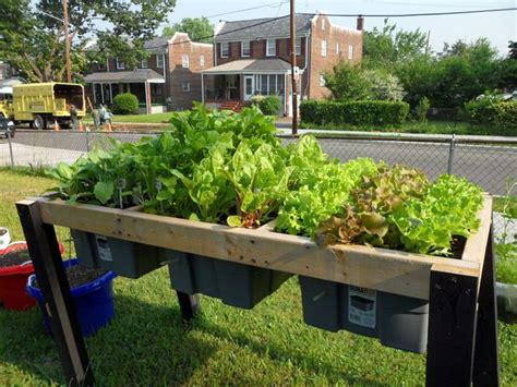 Veggie Table by Diy Self Watering Veggie Table Gutter Garden System