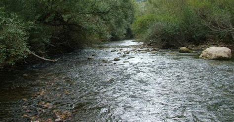 comune lavello fenomeni anomali nel fiume ofanto il comune di lavello
