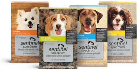 sentinel spectrum for dogs middletown veterinary hospital welcome