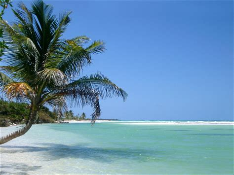 wallpaper free beach beach wallpapers hd wallpapers widescreen desktop