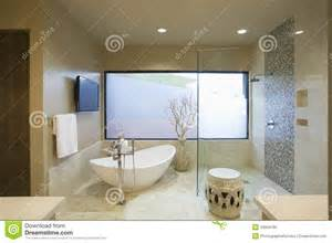 Twin Bathtub Modern Bathroom With Freestanding Bath Royalty Free Stock