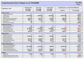 Non Profit Monthly Financial Report Template fundraising report software for donor analysis