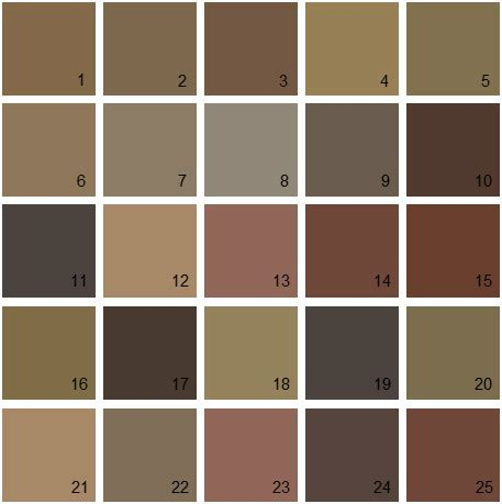 paint colors brown brown color swatch www pixshark images galleries