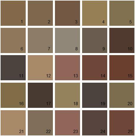 brown paint colors brown paint color palette www pixshark com images