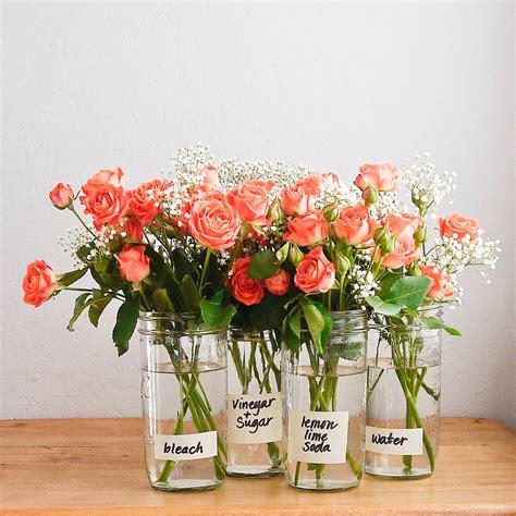 how to make flowers last longer popsugar smart living