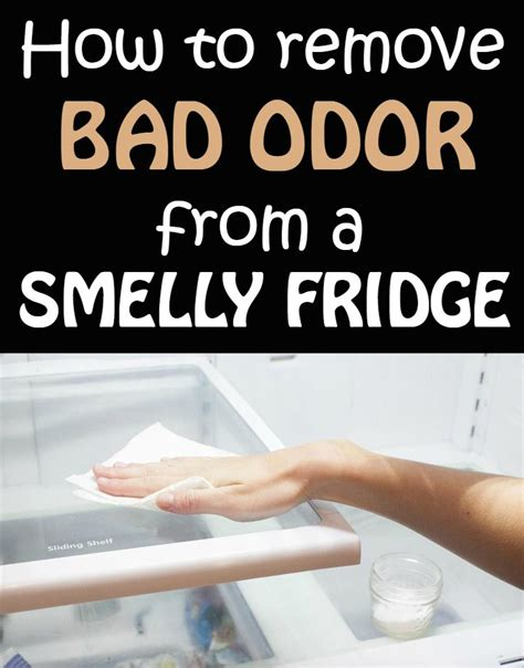 Remove Smell From by How To Remove Bad Odor From A Smelly Fridge