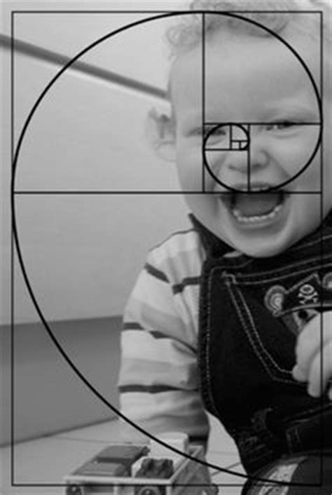 Golden Section Photography by 1000 Images About Math On Sacred Geometry