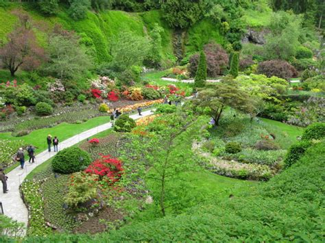 Pflanzen Italienischer Garten by Green Plant Italian Garden Garden Ideas Gardening Ideas