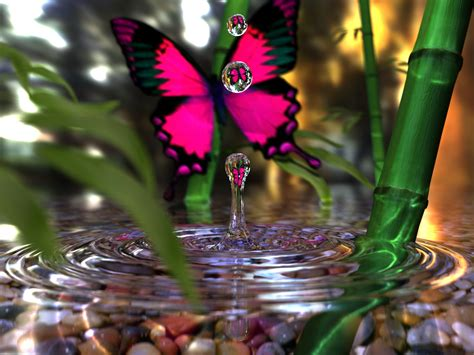 iman sadeghi s homepage a butterfly a water drop and a