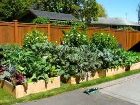 backyard layouts ideas triyae backyard vegetable garden layout various