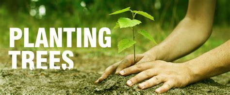 planting trees clickastrocom
