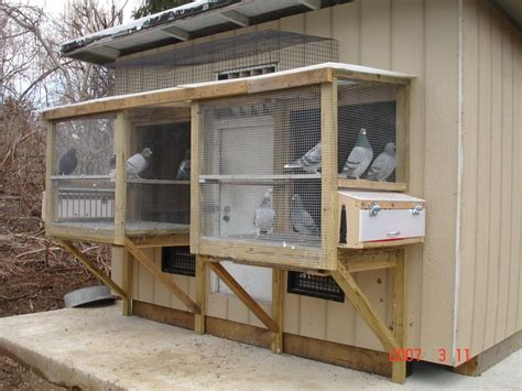 17 best images about pigeon lofts and bird cages on