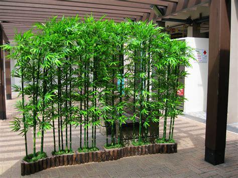 hoi kee flower shop bamboo landscape 34