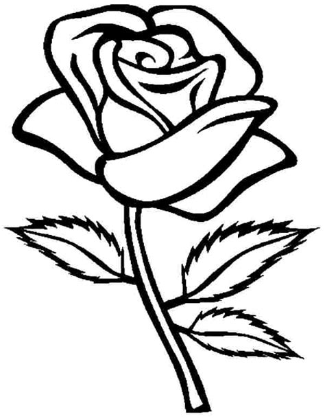 free coloring pages flowers roses 39 free coloring pages of flowers gianfreda net