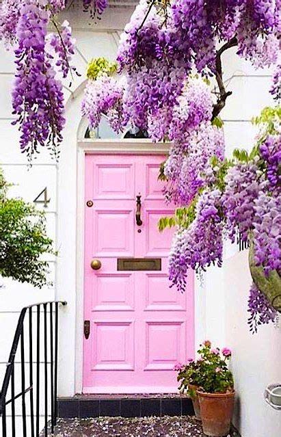 Notting Hill Front Door Pink Door With Wisteria In Notting Hill Doors Of Distinction