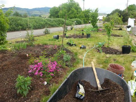 backyard organics backyard organics 28 images backyard organics