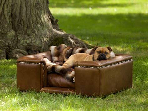 dog settee real leather dog sofas luxury dog beds
