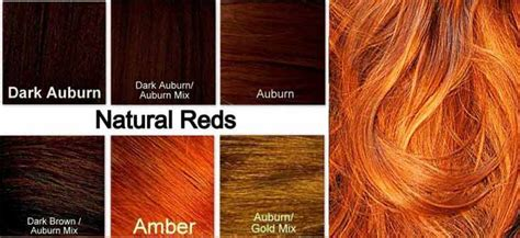 Ginger Hair Chart | ginger hair color dye best on dark skin chart how to