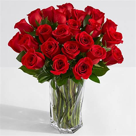 A Dozen Black Roses happy birthday roses beautiful roses that say happy