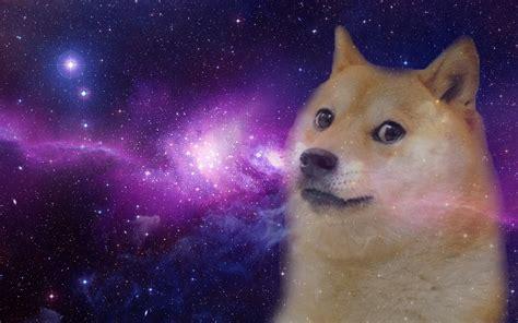 doge  epic wallpaper dump doge memes doge