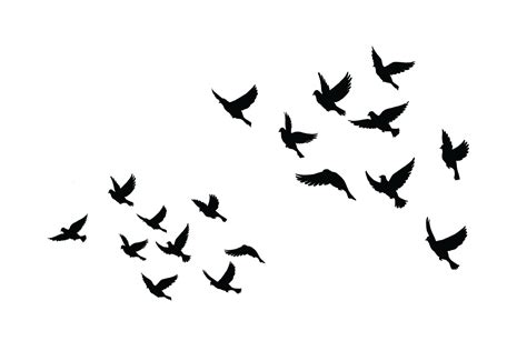 bird silhouette tattoo flying dove silhouette