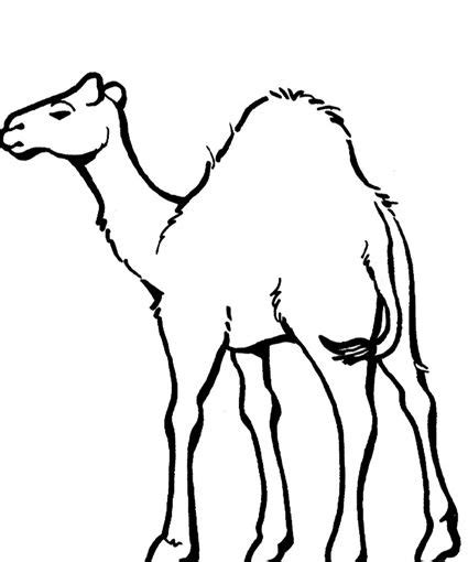 coloring pages nativity animals printable camel coloring pages nativity animals 17969