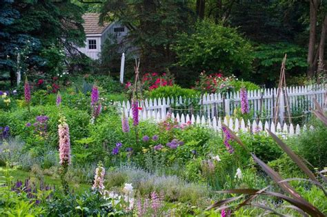 1000 images about gardener david culp on pinterest