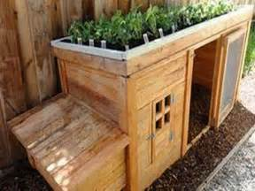 gallery for gt simple homemade chicken coop