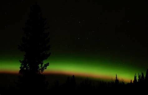 Fairbanks Northern Lights by Fairbanks Ak The Northern Lights Photo Picture Image