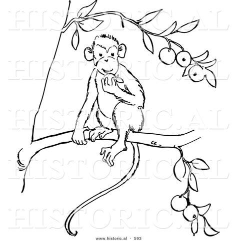 Home Design Vector Free Download Monkey Outline Clipartion Com