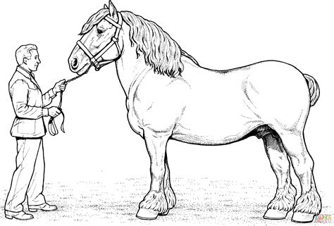 Clydesdale Coloring Pages 301 moved permanently