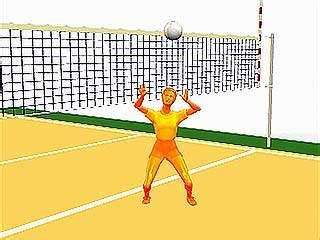 setter definition in volleyball volleyball definition rules positions facts