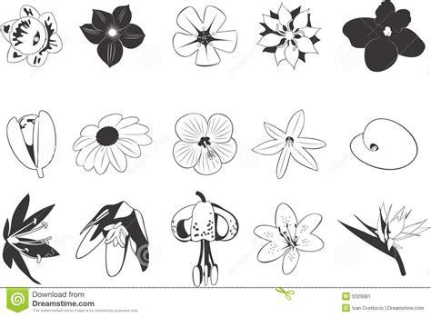 japanse tekeningen bloemen tekeningen van bloemen vector illustratie illustratie
