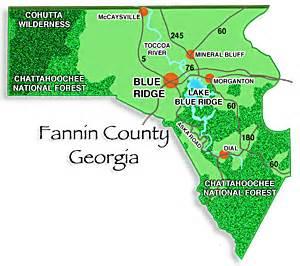 blue ridge fannin county