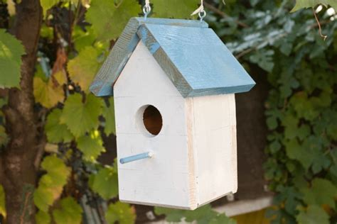 bird houses for sale cool bird houses for sale bird cages
