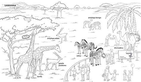 dibujos para colorear zoo w zoo fiszki edukacyjne
